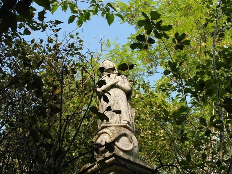 Тарнорудський некрополь фігурує в багатьох історичних подіях