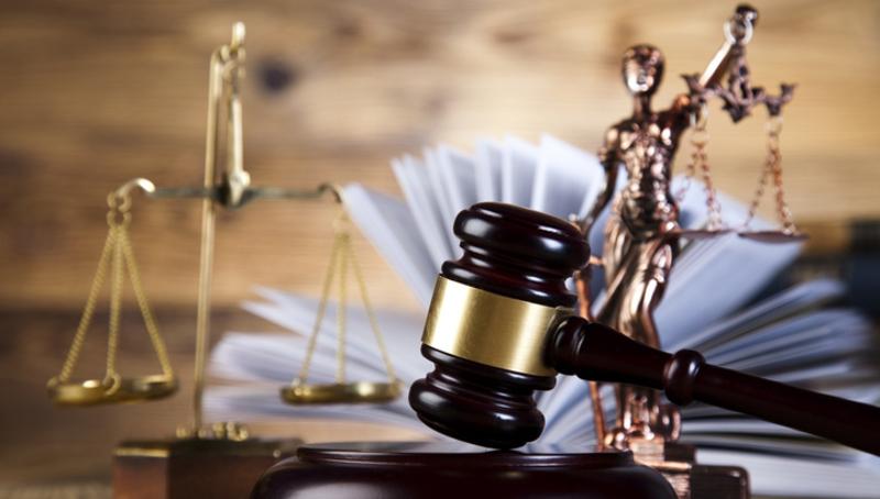 16-річна мешканка Ярмолинець матиме судимість за крадіжку горіхів