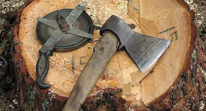 Працівник вніс недостовірні дані до документів про відчуження деревини