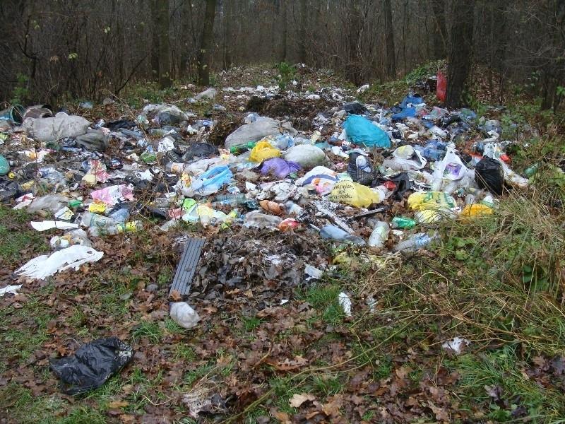 У 51-у населеному пункті стоять контейнери для збору сміття