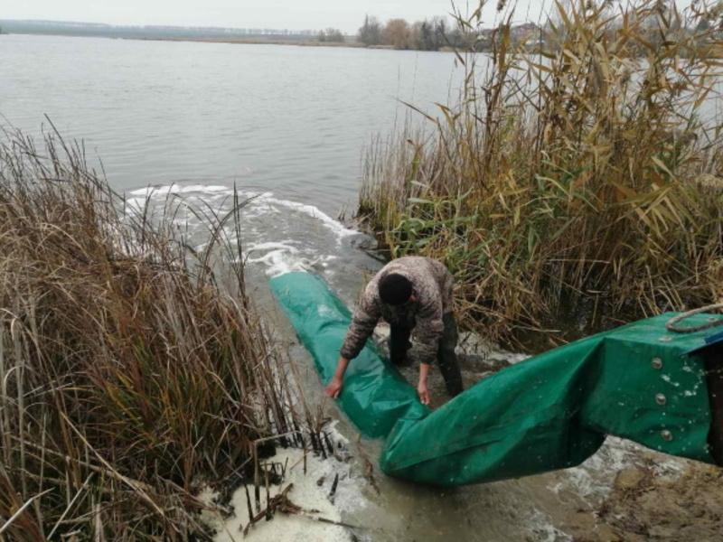 До водойми випустили 1 тисячу 100 кілограмів дворічок риби