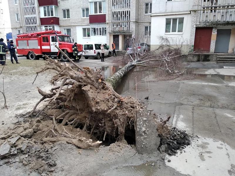 В Славуті рятувальникам довелося ліквідовувати наслідки стихії