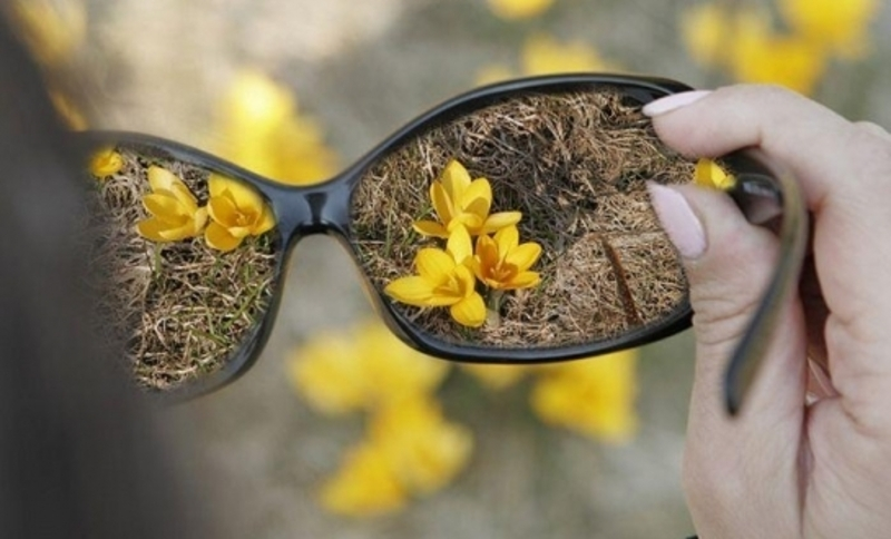В рамках акції планується придбати засоби, які полегшують життя слабозорим або сліпим людям