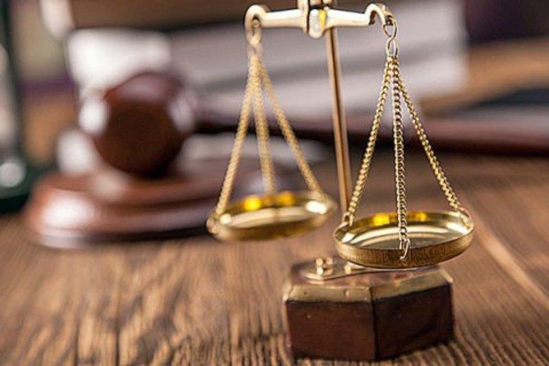 Ізяславський суд зобов'язав міську раду відшкодувати шкоду за пошкоджене деревом авто