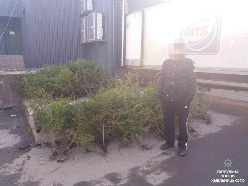 Чоловік продавав новорічні деревця без дозвільних документів.