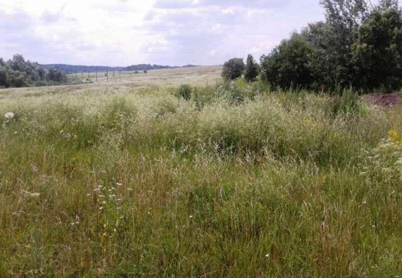 На Хмельниччині продали 51,95 гектара комунальних земель