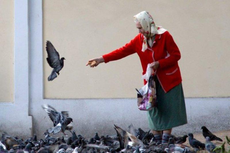 На Хмельниччині в середньому пенсія підвищується на 67 гривень