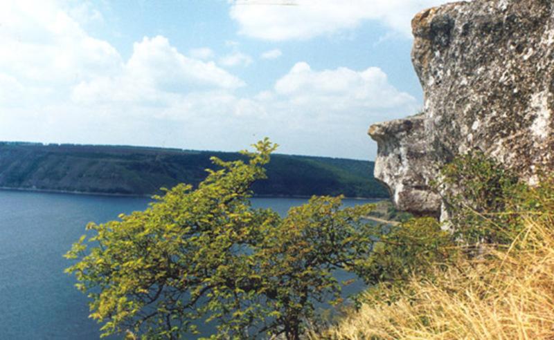 Ділянка площею 5,5 гектара, розташована на території Кам'янець-Подільського району, надана суб'єкту господарювання для використання до 2055 року