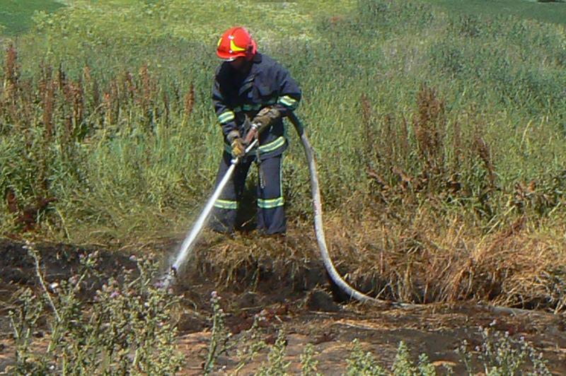 Пожежники врятували від розповсюдження вогню кукурудзяні поля