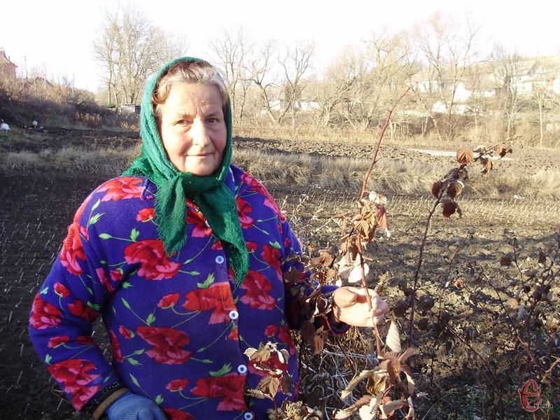 «Плодово-ягідні потрібно ретельно готувати до зими», - каже пані Станіслава.