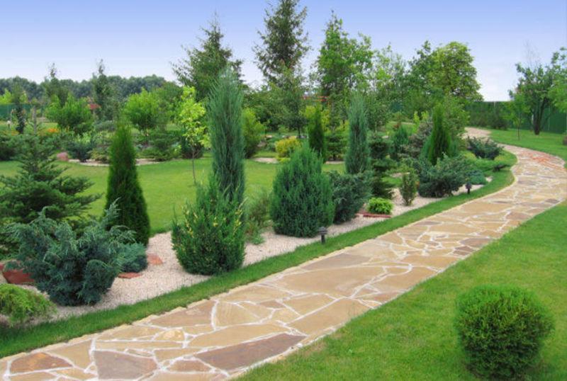 Мешканці обласного центру можуть долучитися до  озеленення території міста