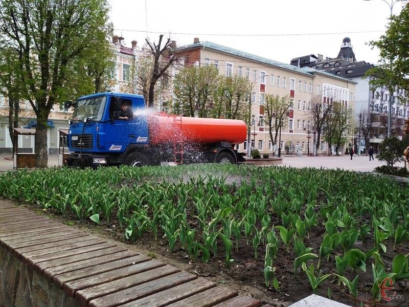 Полив квітників здійснюється майже щодня, в залежності від погоди