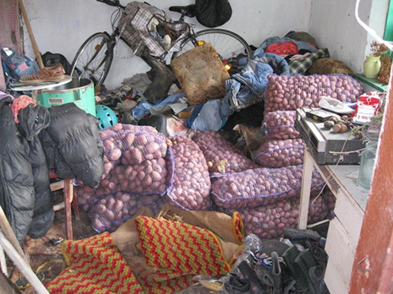 Усі викрадену картоплю правоохоронці знайшли в домогосподарстві одного з підозрюваних