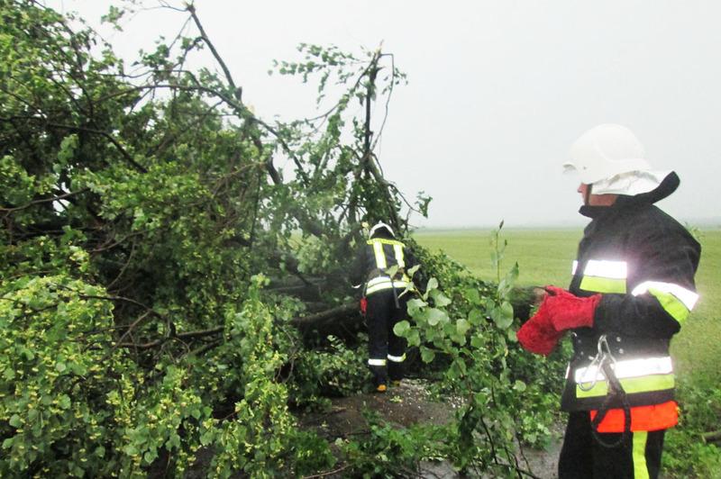 Рятувальникам довелося не раз виїжджати на виклики, щоб ліквідувати наслідки погодних умов