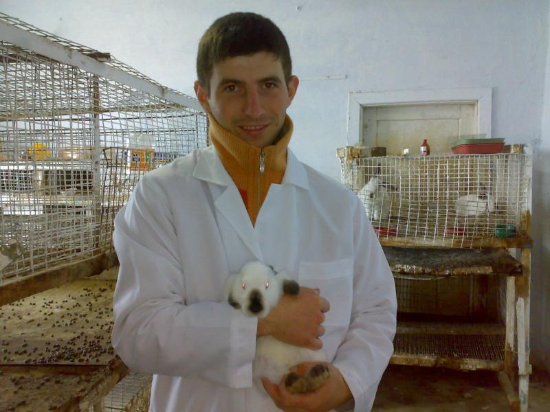 «Вакцинація забезпечує кроликів захистом» - каже ветеринар.