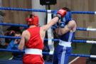 Чортова дюжина медалей хмельницьких та кам'янецьких боксерів