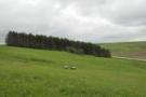 На Білогірщині взялися розвивати сільський туризм
