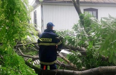 В селі Михнів Ізяславського району через сильний порив вітру розкололося дерево та нависло над житловим будинком