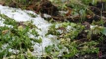 У четвер на Хмельниччині можливий мокрий сніг