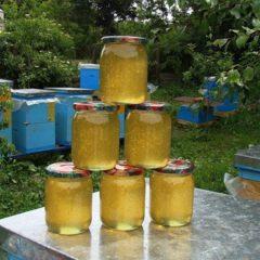Мед, пилок квітковий, забрус, прополіс з домашньої пасіки