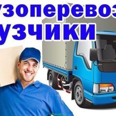 Вантажники та перевезення
