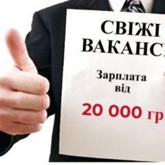 Вакансія агенства: керівник відділу продажу