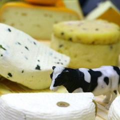 Вакансія агенства: працівник в цех (порізка сирів)