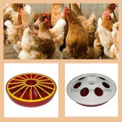 Поїлка для курчат та інші види поїлок для птиці