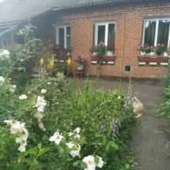 Будинок з ділянкою та садом