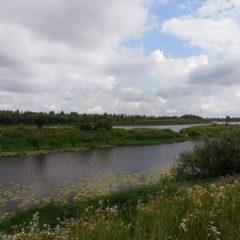 Зазим'я, в 50 метрах від річки Десна, 25 соток під забудову